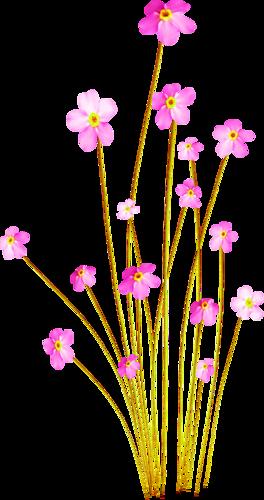 tubes_fleurs_tiram_561