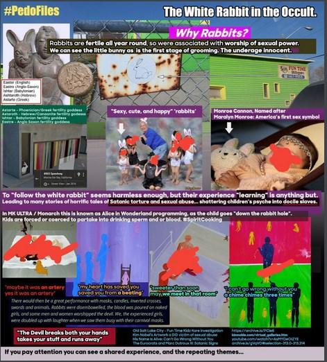 [Image: White_Rabbit_Pedophiles_screenshot.jpg]