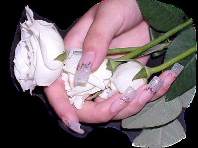 tubes_fleurs_tiram_764