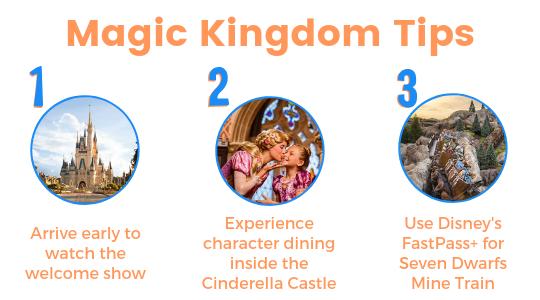 Magic Kingdom tips