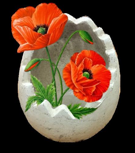 fleurs_paques_tiram_294