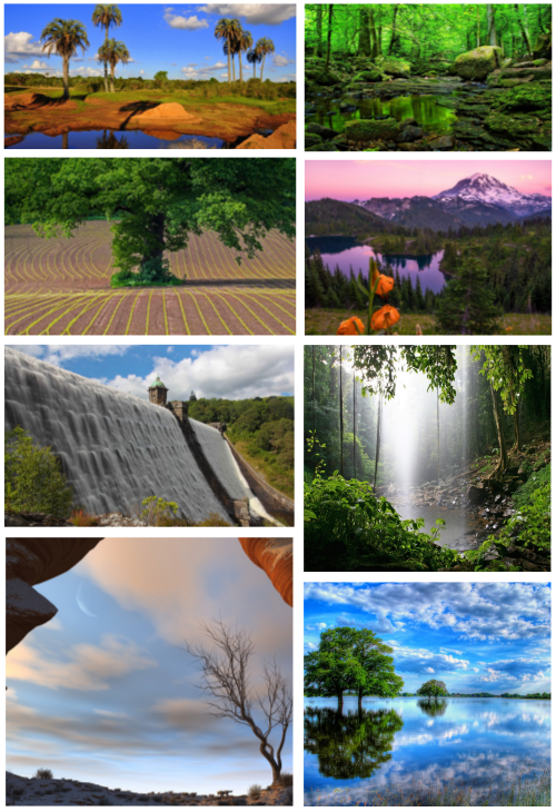 Most Wanted Nature Widescreen Wallpapers # 576