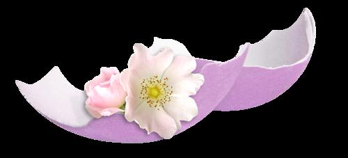 BON MARDI Fleurs_paques_tiram_131
