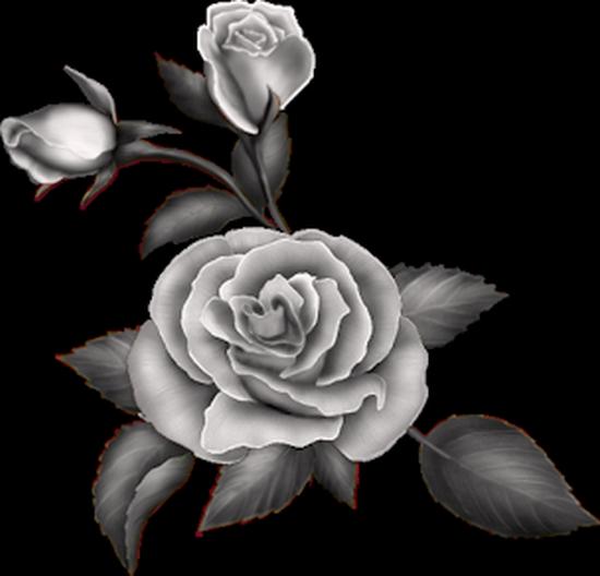 tubes_fleurs_tiram_354