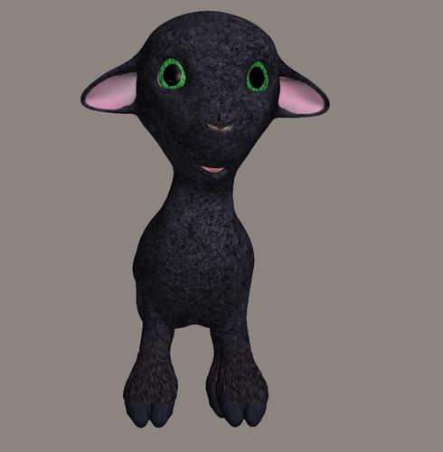 mouton_tiram_40