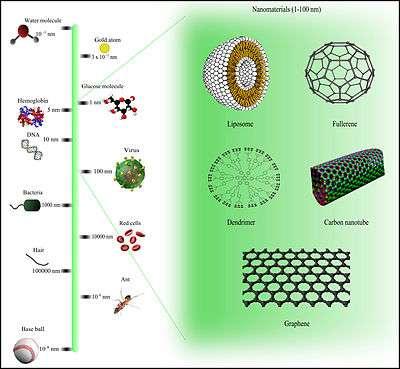 Comparison_of_nanomaterials_sizes.jpg