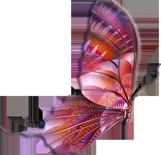 tubes_papillon_tiram_159