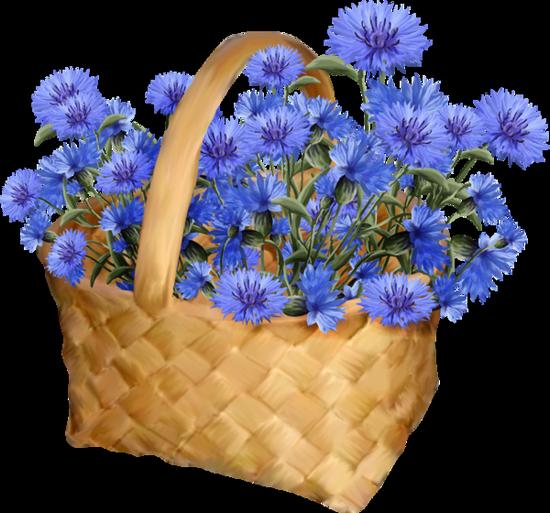 tubes_fleurs_tiram_76