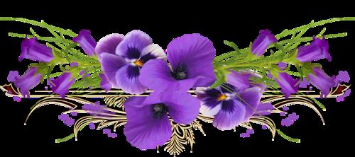 fleurs_paques_tiram_39