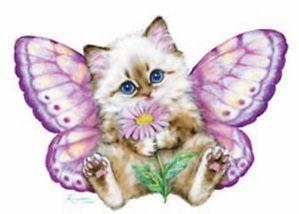 Butterfly_Kitten.jpg