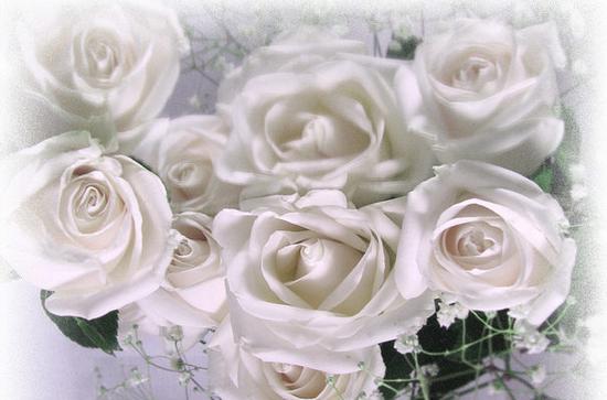 tubes_fleurs_tiram_344
