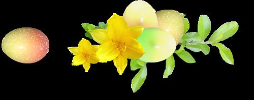 fleurs_paques_tiram_65
