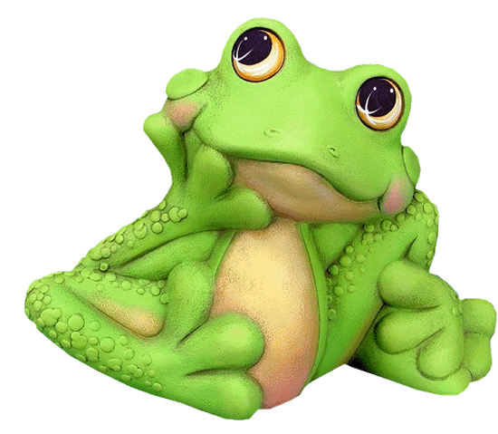 grenouille_tiram_119