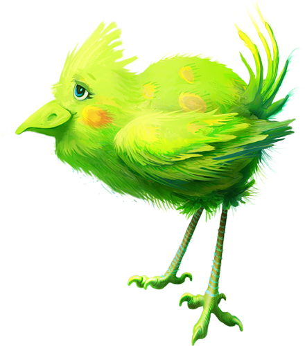 tubes_oiseaux_tiram_87