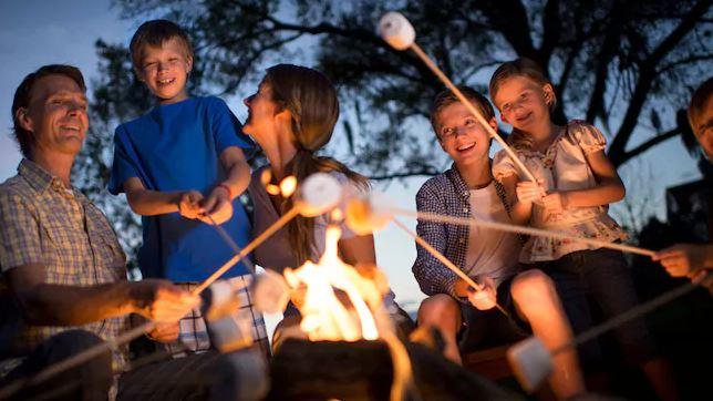 Disney Campfire