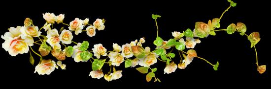 tubes_fleurs_tiram_13
