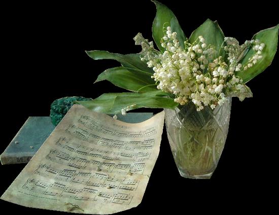 tubes_fleurs_tiram_481
