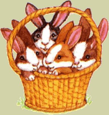 lapins_paques_tiram_224