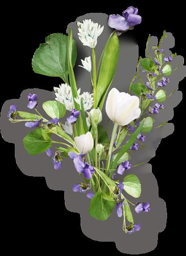 tubes_fleurs_tiram_579