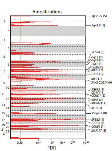 CNV plot with gene names