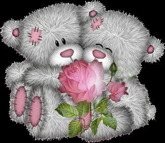 teddy_saint_valentin_tiram_383