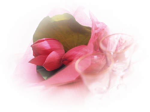 tubes_fleurs_saint_valentin_tiram_72