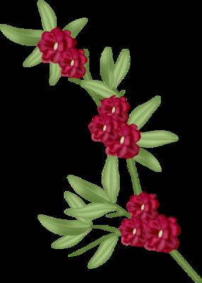 tubes_fleurs_saint_valentin_tiram_109