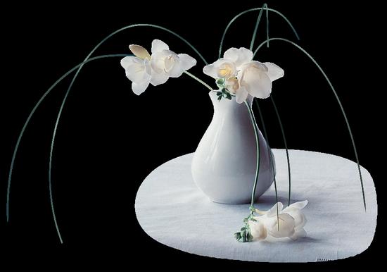 tubes_fleurs_tiram_252