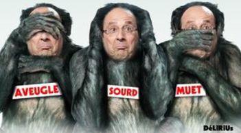 les_singes_sage