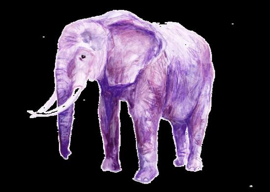 tubes_elephants_tiram_281