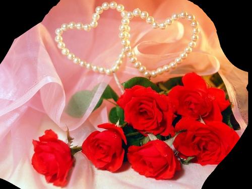 tubes_fleurs_saint_valentin_tiram_41