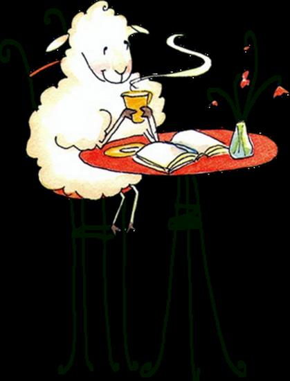 mouton_tiram_15