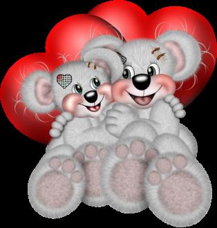 teddy_saint_valentin_tiram_178