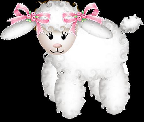 mouton_tiram_55