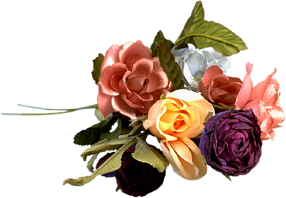 tubes_fleurs_tiram_937