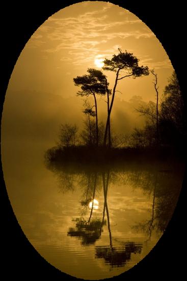 paysage_tiram_864