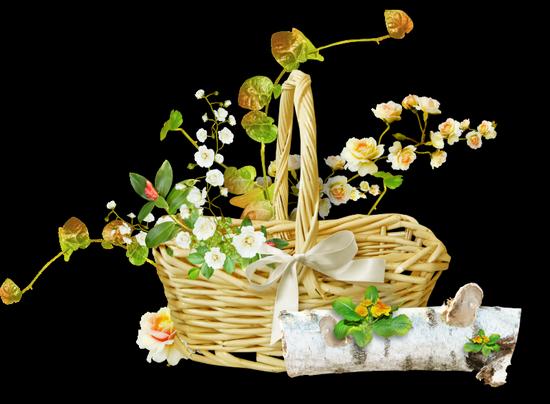 tubes_fleurs_tiram_16