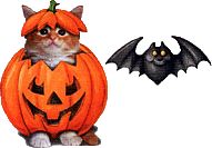 animaux_alloween_tiram_267
