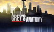 Greys Anatomy - Sistema Próprio