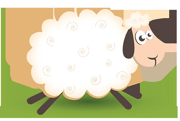 mouton_tiram_28