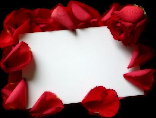 tubes_fleurs_saint_valentin_tiram_70