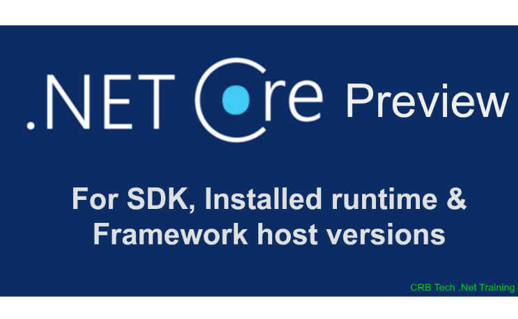 .Net Core Preview For SDK
