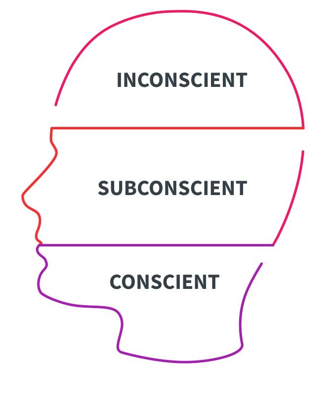 cervea - Inconscient, subconscient et conscient: Comment ces parties du cerveau détermine ce que nous matérialisons ?