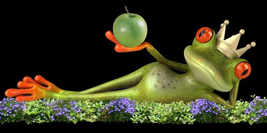 grenouille_tiram_14