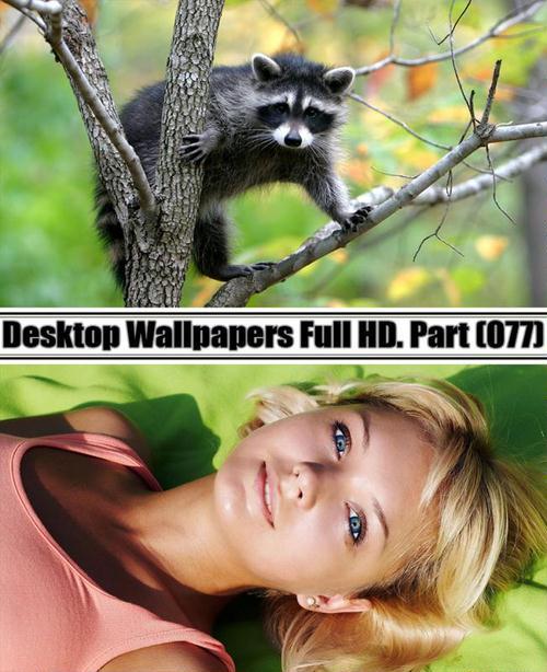 Desktop Wallpapers  HD. Part 77