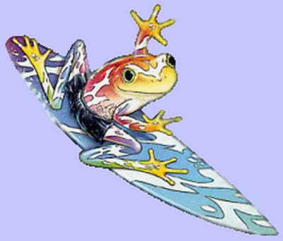 grenouille_tiram_47