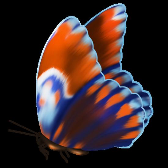 tubes_papillon_tiram_397