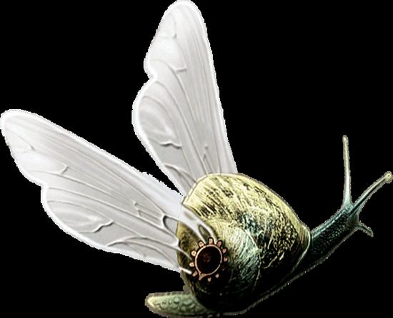 tubes_escargots_tiram_193
