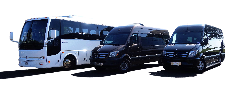 Imi Tours Fleet