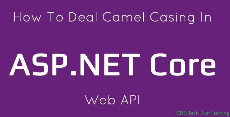 How To Deal Camel Casing In ASP.NET Core Web API
